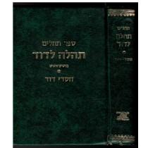 תהלים תהלה לדוד חסדי דוד בוטשאטש